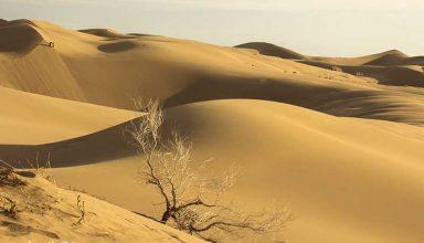 Maranjab-Desert-Kashan-Iran