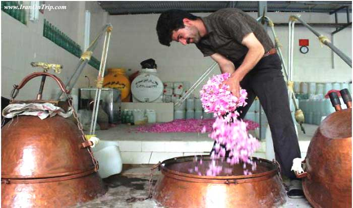 Rose-water-Festival in Kashan Iran