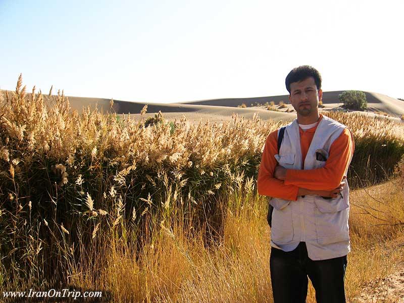 محمد جعفری میر وب سایت گردشگری ایران در سفر