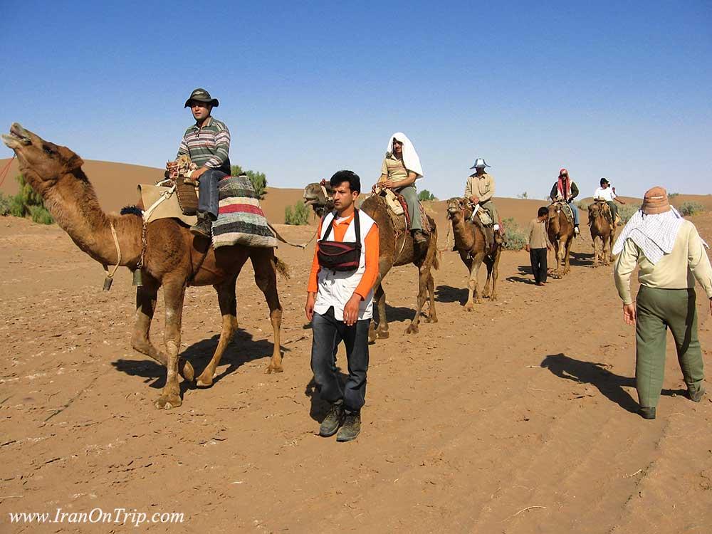 محمد جعفری مدیر وب سایت گردشگری ایران در سفر - روستای - شتر سواری در روستای توریستی مصر