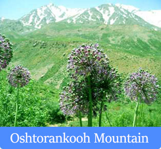 Oshtorankooh Mountain - Mountains of Iran